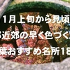 京都近郊の11月上旬から色づく穴場の紅葉おすすめスポット18選