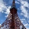 介護保険料と東京タワー