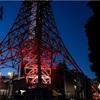 α7 III & TAMRONで散歩編11ー東京タワー(下から)編ー