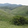 田舎ぐらし、緑の秋吉台