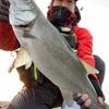【番外編】七里御浜でヒラスズキを釣るポイント(急深サーフでの砂ヒラ攻略)