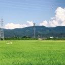 新潟県民歴34年が語るおススメグルメ、温泉、観光スポットを徹底解説!