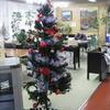 クリスマスツリー☆Noël