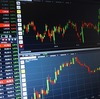 人差し指が短い人は株で儲ける?