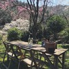 春のHOVEL kusayama