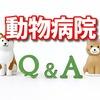 動物病院を大阪で救急や日曜日に中央区、北区、西区のおすすめ
