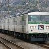3月10日撮影 東海道線 平塚~大磯間 貨物列車 3075ㇾ 2079ㇾと【185系踊り子号】3本を撮る