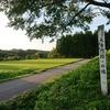 大蔵村 清水城の歴史と史跡をご紹介!🏯