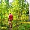 フィンランドの森の学校事情