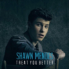Shawn Mendes - Treat You Better 歌詞和訳で覚える英語