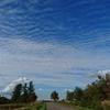 雲が、果てしなく続いていた。美瑛の丘を駆け巡ってみた。