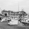 monochrome 〜印南漁港と猫〜