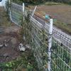 所有太陽光発電所の台風19号による被害