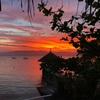 モアルボアルの隠れ家的プチリゾート Asian Belgian Dive Resort のレビュー!