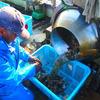 牡蠣の小は、◯で◯分◯すると手軽に食べれます。