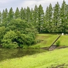 小室調節池 (雨水一時貯留施設)(千葉県白井)