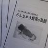 「山田芳人が明かすらんちゅう飼育の真髄」を買いました