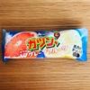 赤城乳業 ガツン、とW(ダブル)グレープフルーツ 【コンビニ】