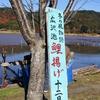 京都 12月の広沢の池で今年も「鯉上げ」に立ちあいました!(私は鯉は食べられないけど…)