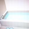 【夢日記】5月18日~5月19日お風呂場の蜘蛛の夢
