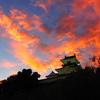 掛川城 今川氏の終焉をむかえた城