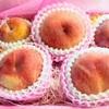 桃とりんごジュースを頂きました。|引き寄せの法則2回目!