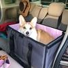 【We ♡ コーギー】わんちゃんと車でお出かけするなら、ドッグボックスがあると便利