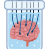 脳のワーキングメモリを鍛える