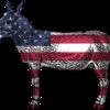 民主党政権は財政拡張的なのでドル安方向になるのでしょうか。