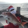 2018-12-24 サンタクロースがやって来た!
