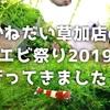 かねだい草加店のエビ祭り2019に行ってきました!