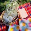 【次女1歳の誕生日】1週間遅れのピクニックパーティー
