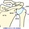 肩関節脱臼へのアプローチ@救急外来
