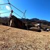 悲しいトラブル。キャンプ前に突風でテントが破壊された