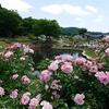 村山市の近世・近現代史の歴史と史跡をご紹介!🏞️