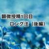 顕微授精1回目ロング法(後編)