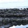 週末ライフ。「サーファーの影も少ない浜辺を歩いて渡った岩場で眺める潮時は、薄曇りの空色が海に映って、小さな波紋を見つけながら過ごした休日の午後」の巻