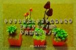 【ミニチュア】多肉植物とキノコ。小さなウッドブロックに広がる緑の世界
