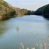 鴨生田中池( 福岡県直方)