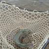 フィッシングパークアルクスポンド 宇都宮【子どもとの釣行。子どもに魚を釣らせることができるのか】