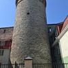 タリンで中世の街並を観光! ~ヘルシンキから日帰りで~