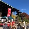 京都東寺「弘法市」半年ぶりに行きました!感想まとめ