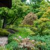 世界遺産 姫路城の横でひっそりと「好古園」