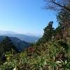 運動不足解消 アウトドア気分も登山気分も味わえた そこには美しい紅葉が ハイキングって面白い 高尾山登ってみました 高尾山山頂から小仏城山までパート2