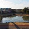いのちの池(愛知県大府)