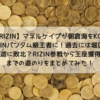 【RIZIN】マネルケイプが朝倉海にリベンジKO勝利でRIZINバンタム級王座獲得!RIZIN参戦から王座獲得までの道のりをまとめてみた!