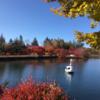 蓼科湖の秋!