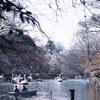 「散策日和@吉祥寺#46(井の頭公園)_桜🌸とBH」_撮影特訓編