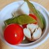 余った野菜を消費する!簡単ピクルスの作り方