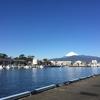 次の富士山もよろしく